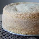 Italiaanse sponscake