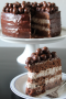 Luchtige chocolade malteser taart